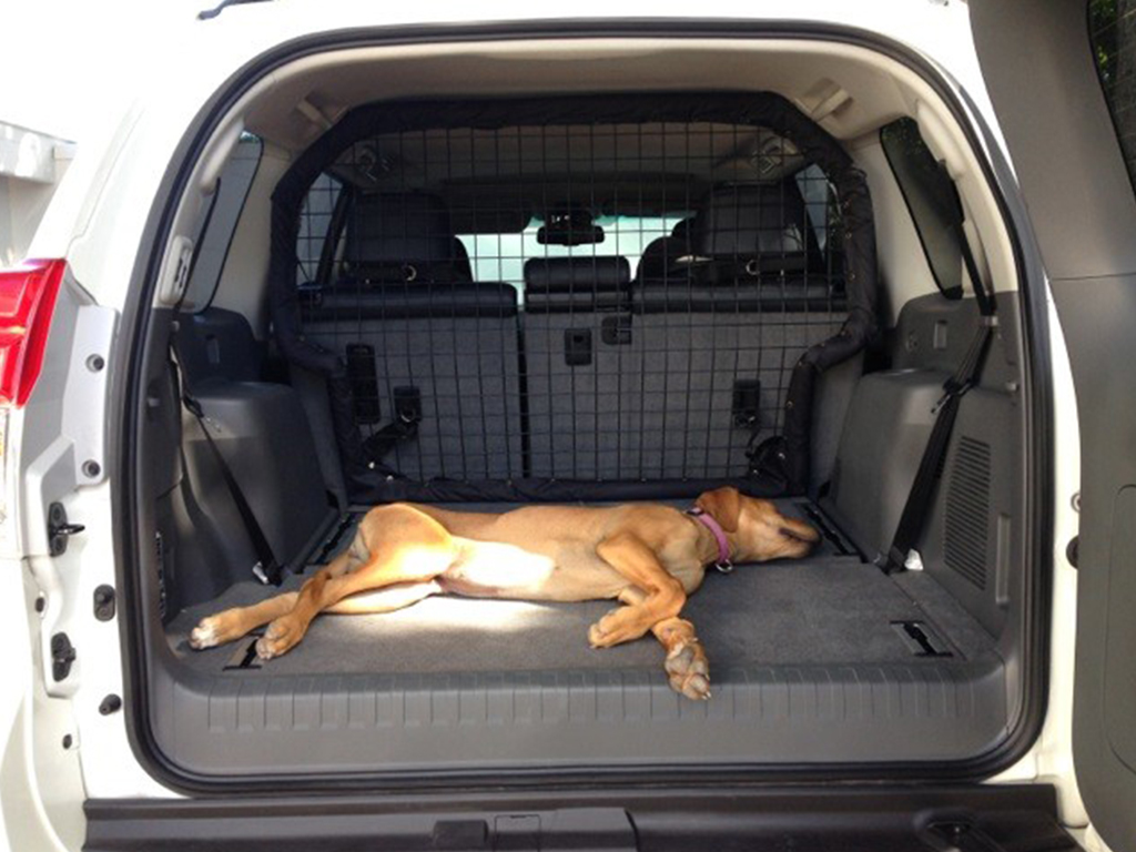 Toyota Prado Dogbarriers